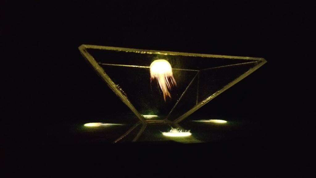 Hologram13