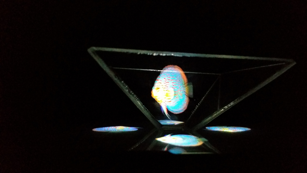 Hologram14